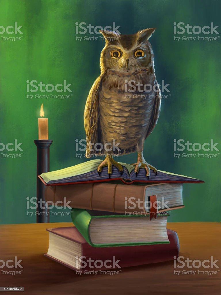 Owl and books vector art illustration