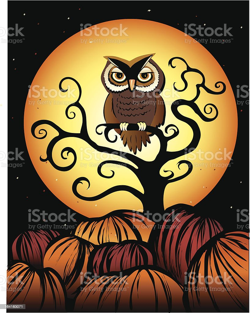 owl at nite vector art illustration
