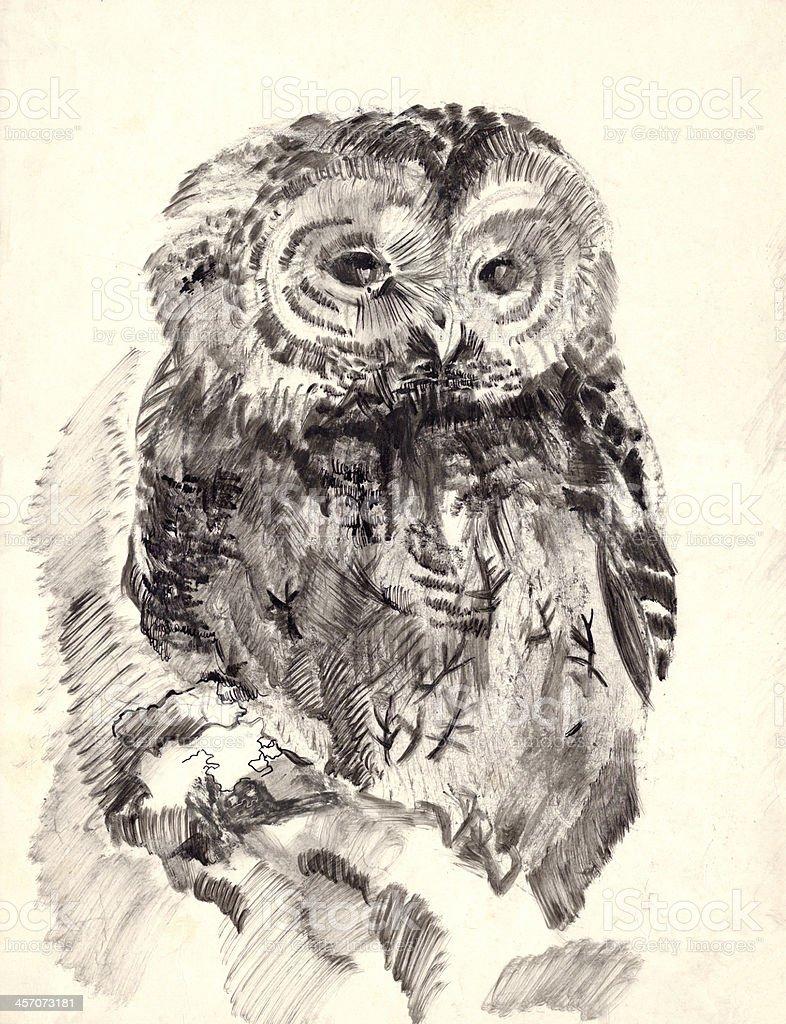 owl brush drawing sketch royalty-free stock vector art