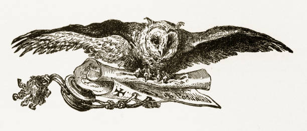 owl flying and carrying a scroll engraving, circa 1892 - black and white owl stock illustrations, clip art, cartoons, & icons
