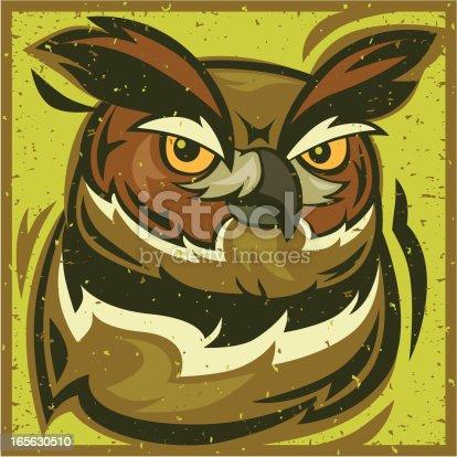 istock owl head 165630510