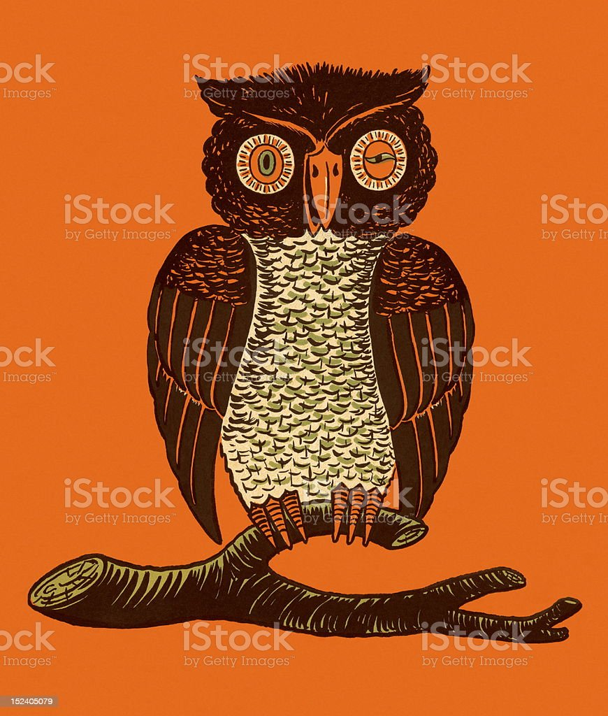 Owl on Branch royalty-free owl on branch stock vector art & more images of animal