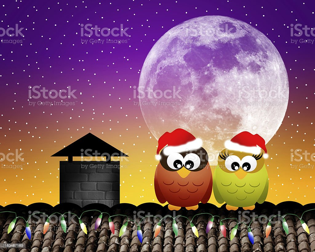 Owls on roof royalty-free owls on roof stock vector art & more images of 2014