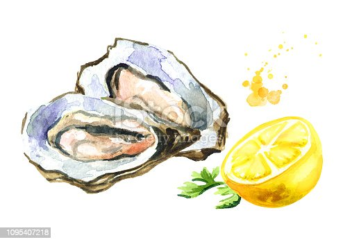 Oyster with lemon, seafood. Watercolor hand drawn illustration, isolated on white background