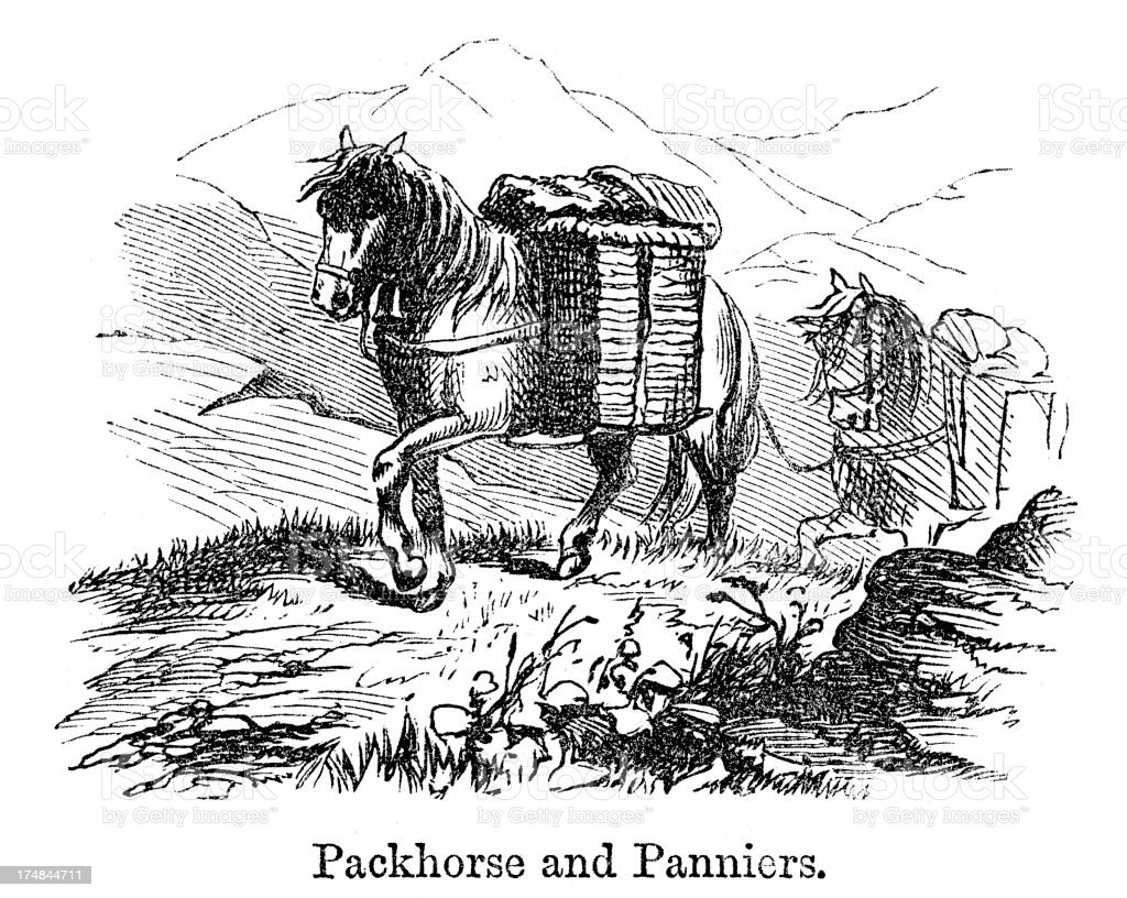 Packhorse and Panniers royalty-free stock vector art