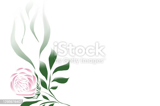 istock Painted peony on a white background 1295676407