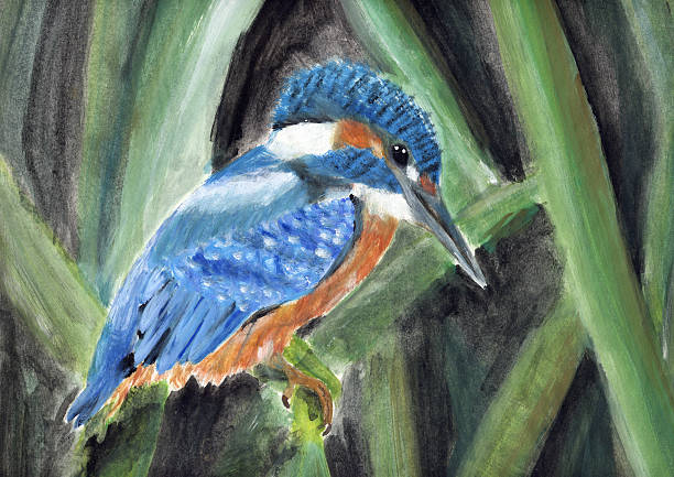 painting of a king fisher vector art illustration