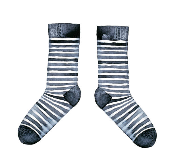 Pair of striped socks, black and white classic design. vector art illustration