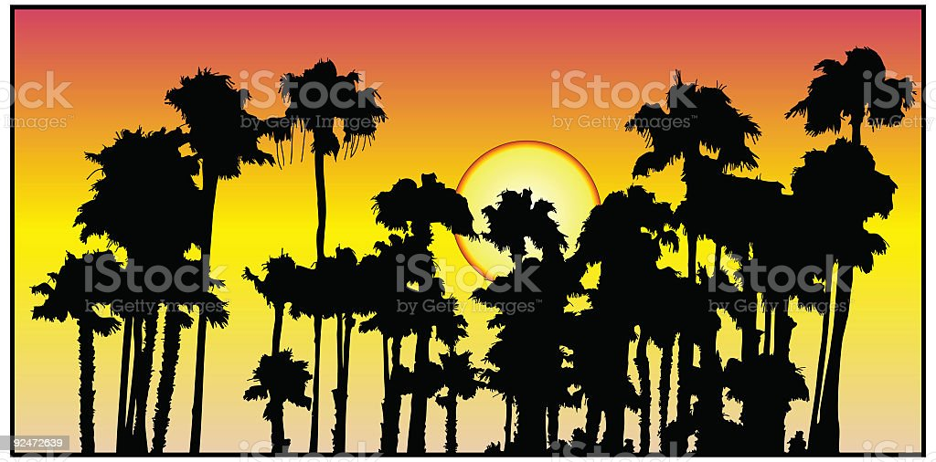 Palm Tree Sunset ( Vector ) royalty-free palm tree sunset stock vector art & more images of color image