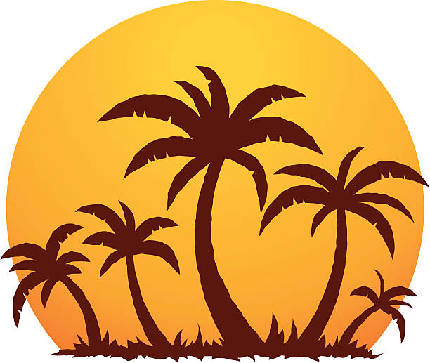 Palm Trees and Summer Sunset vector art illustration