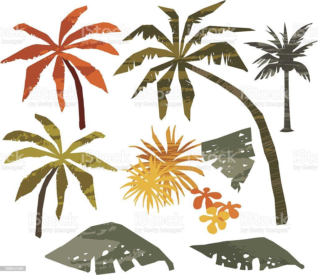 palmeras y hojas de plantas royalty-free palmeras y hojas de plantas stock vector art & more images of clipping path