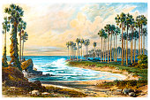 Palmyra palm trees on the beach of Ceylon