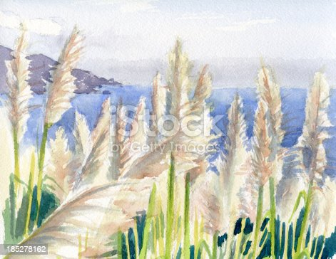 Original watercolor painting by Jenny Speckels(myself) of a seascape along the California Coast by Big Sur with a growth of Pampas Grass.