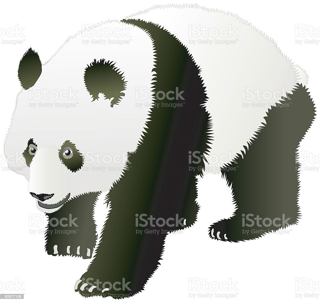 Panda (Vector) royalty-free stock vector art