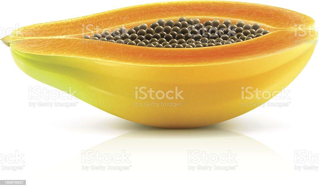 Papaya royalty-free papaya stock vector art & more images of clip art