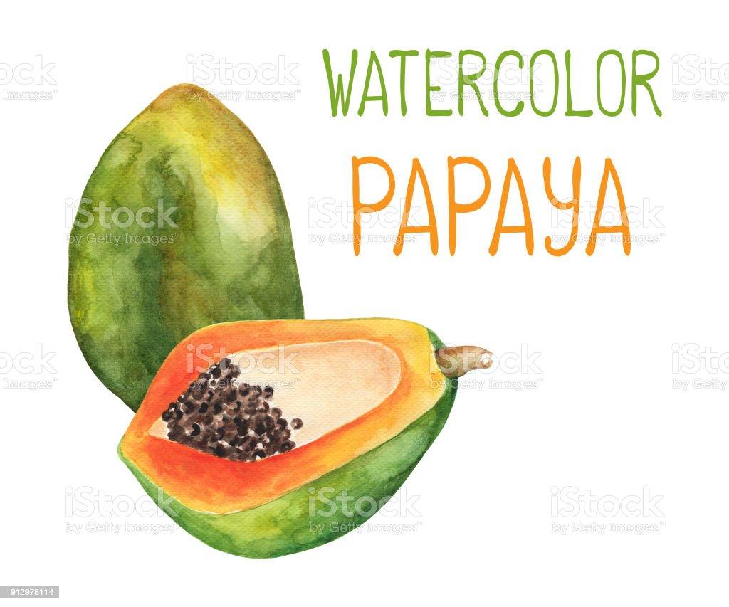 Papaya art coupon codes
