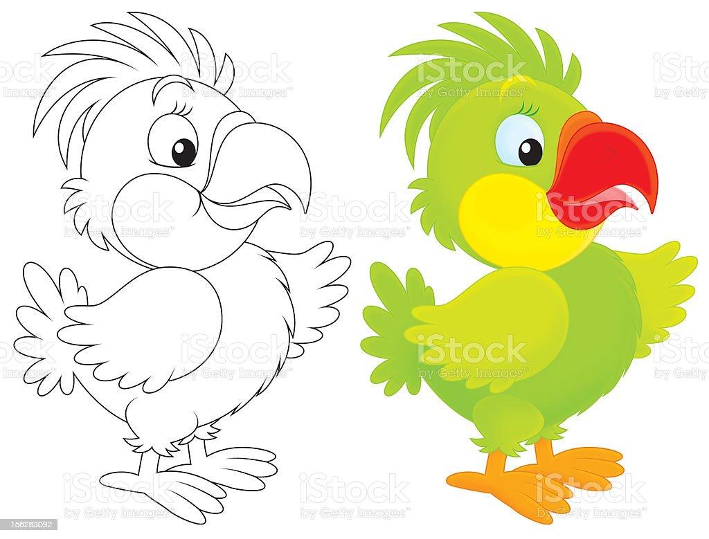 Parrot royalty-free stock vector art