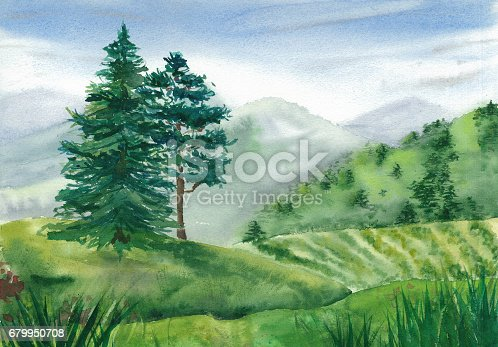 istock Paysage with pine and spruce 679950708