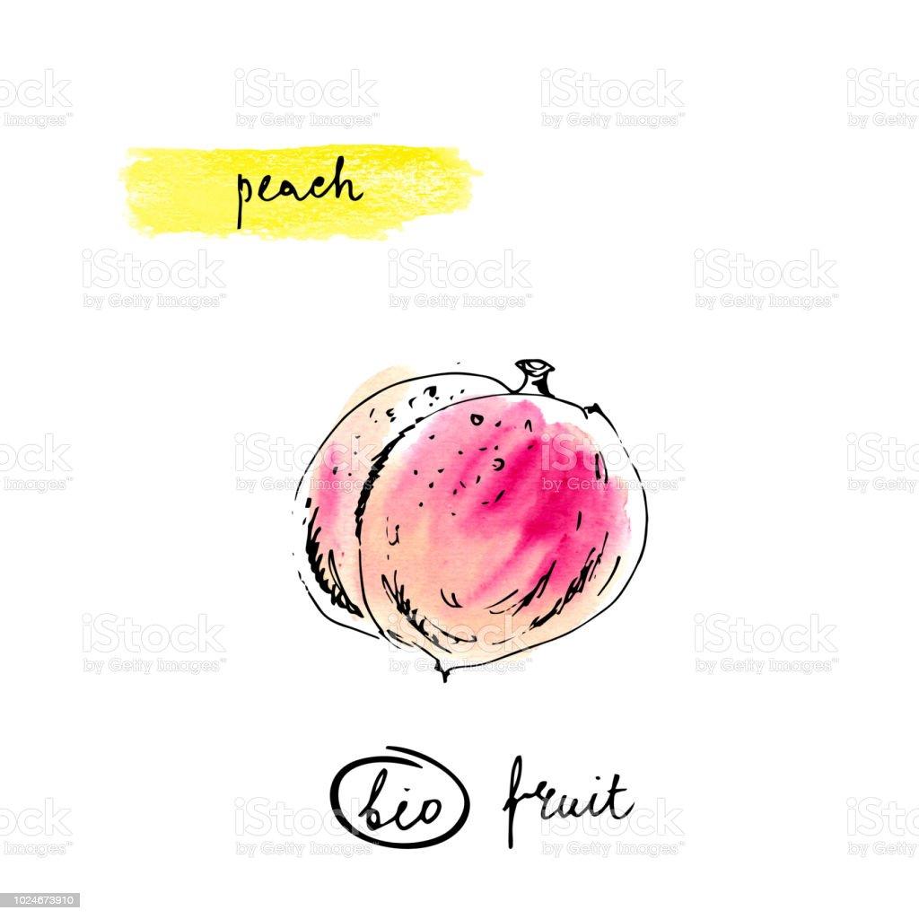 Pfirsich Mit Schriftzug Namen In Rosa Und Orange Farben Isoliert Auf