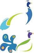 vector file of peacock design