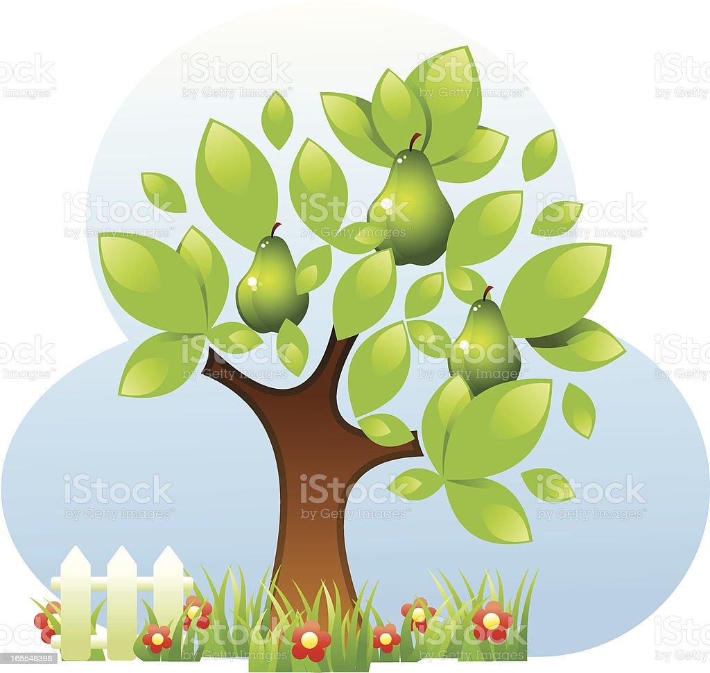 Pear tree royalty-free stock vector art