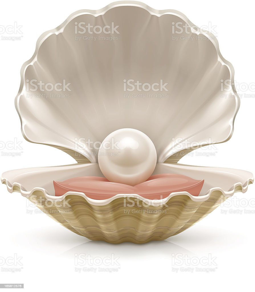 Pearl vector art illustration