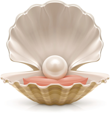 Pearl Stock Illustration - Download Image Now