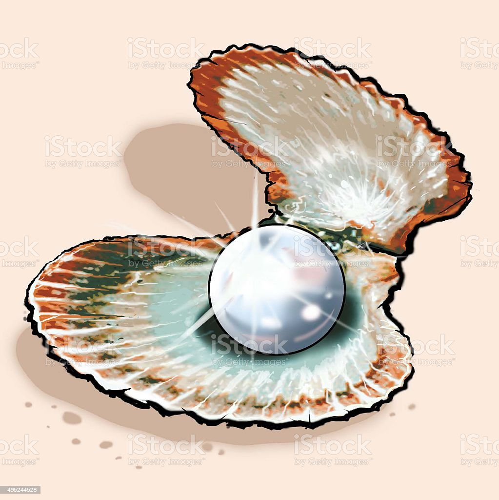Pearl In Clam Stock Vector Art & More Images of 2015 ...