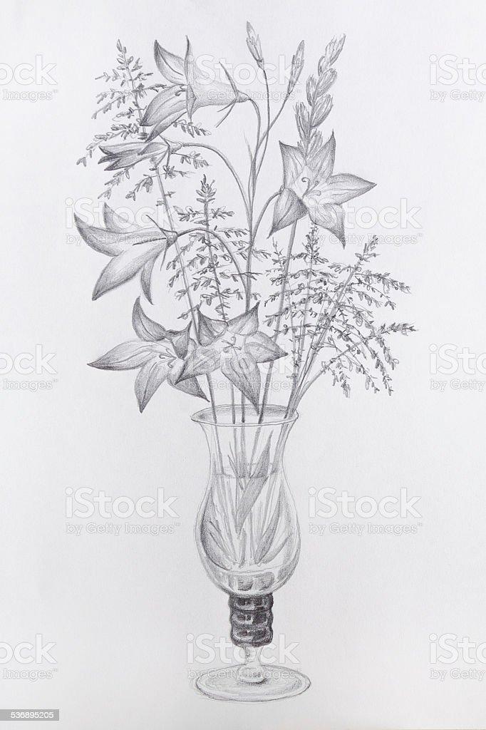 Pencil Drawing Glass Vase Flowers Stock Vector Art & More Images of ...