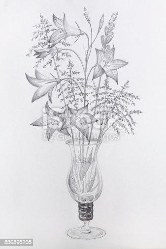 Disegno A Matita Vetro Vaso Di Fiori Immagini Vettoriali