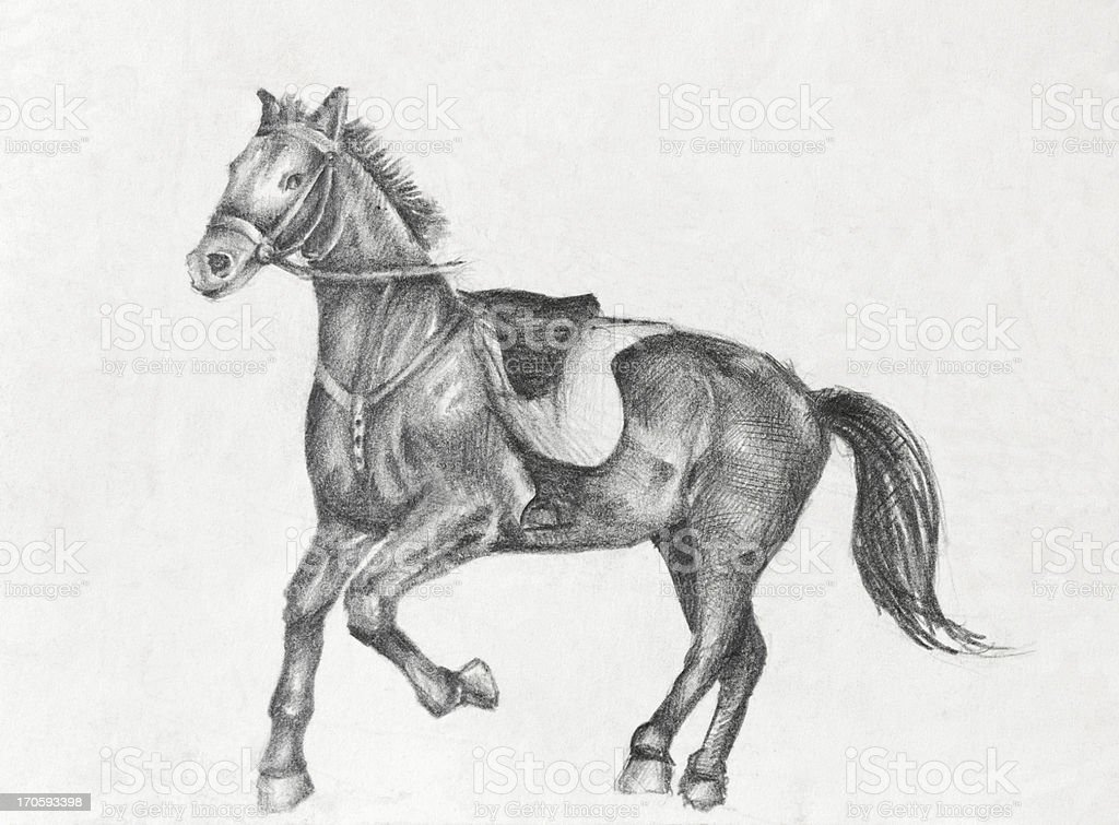 Pencil Drawing Of A Running Horse Stock Illustration Download Image Now Istock