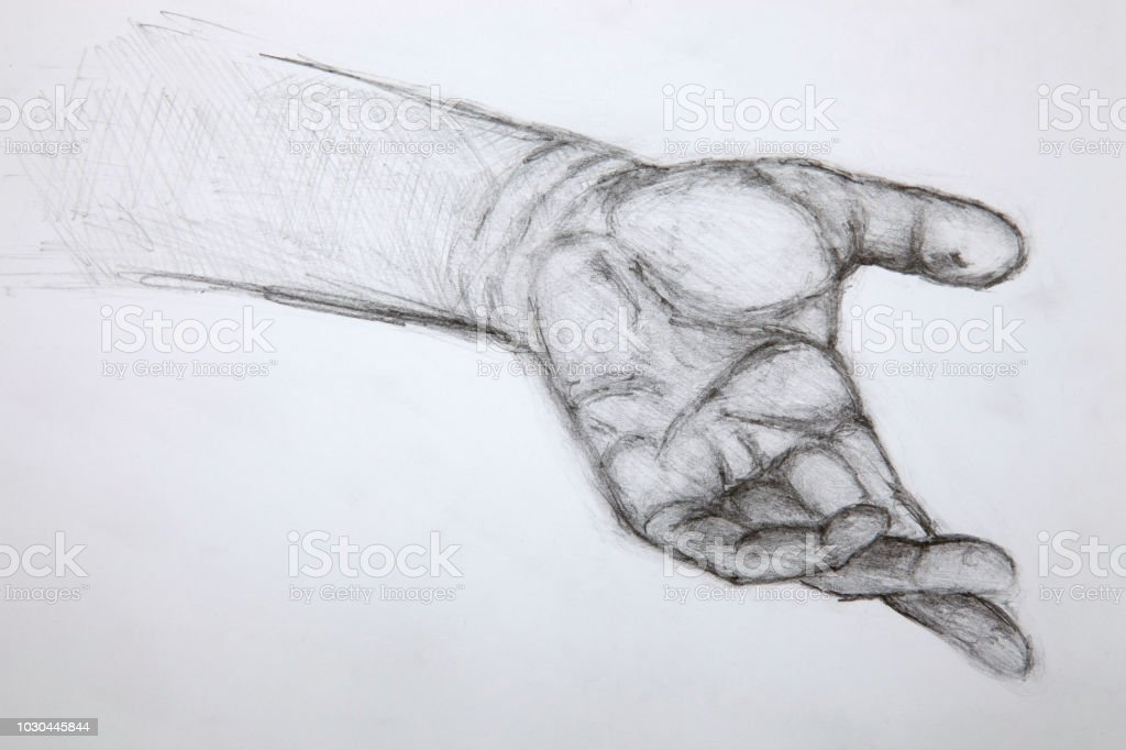 Pencil Hand Drawing Stock Vector Art More Images Of Anatomy