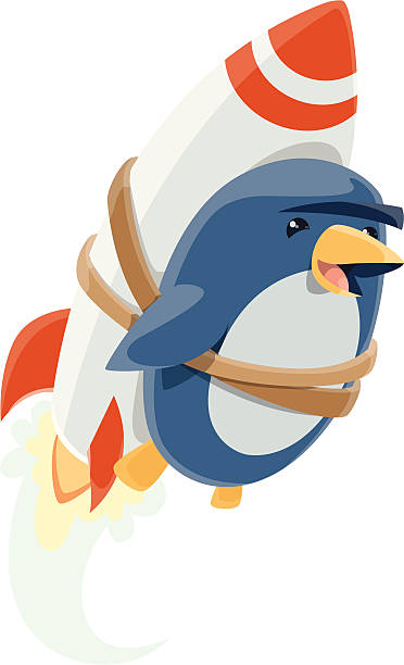 Penguin Rocket vector art illustration
