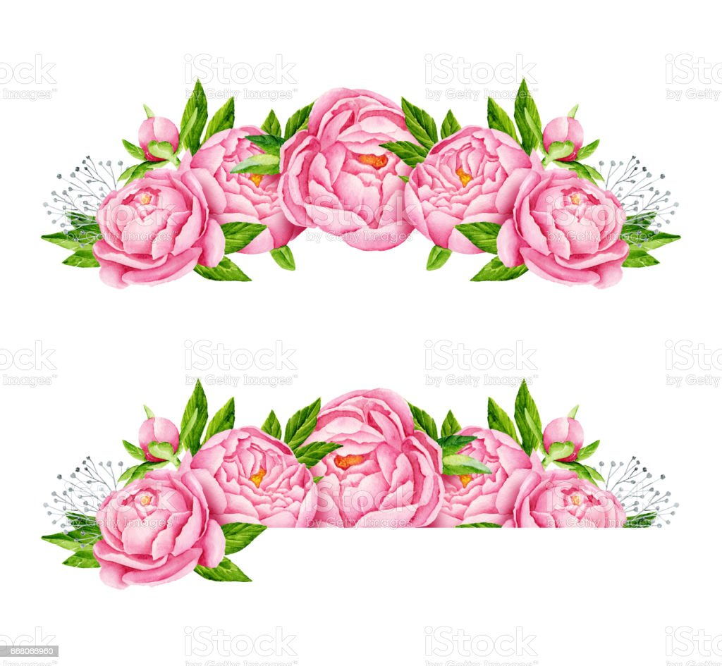 peony flowers borders tender pink flowers wedding design