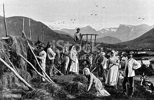 Large group of people harvesting hay at a farm in Jolster, Norway. Vintage halftone etching circa late 19th century.