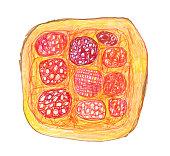 istock Pepperoni pizza 1181634504