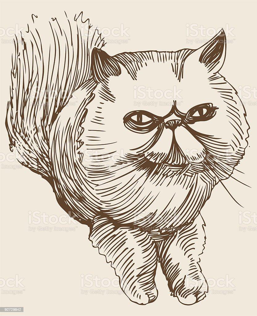 Ilustración de Gato Persa y más banco de imágenes de Color - Tipo de ...