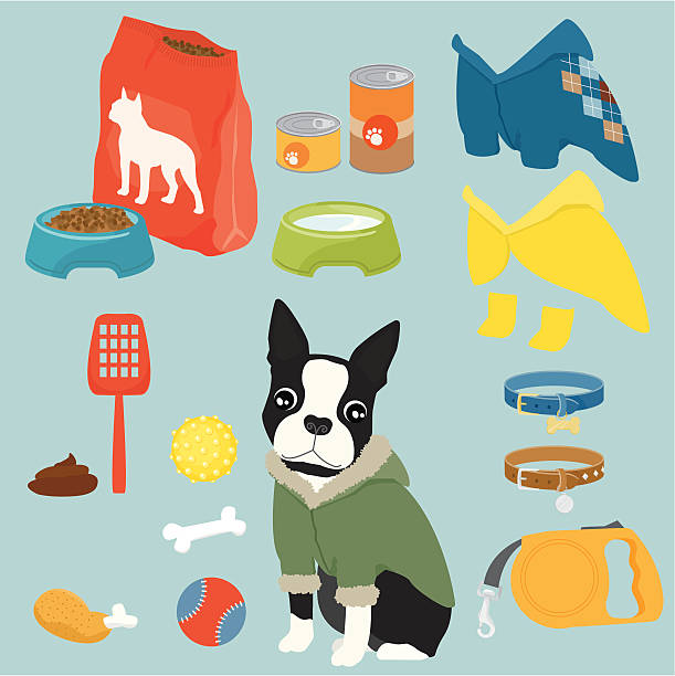 pet equipment / boy - dog treats stock illustrations