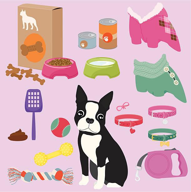 pet equipment / girl - dog treats stock illustrations