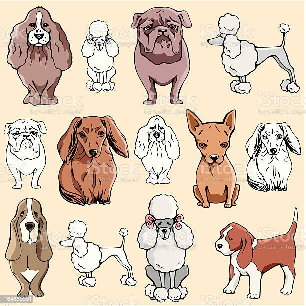 Pet illustrations xiv dogs illustration id164889991?b=1&k=6&m=164889991&s=612x612&h=ktq9pxmf 54la8yqiukdaada9kyrro vpbnhxsyaobu=