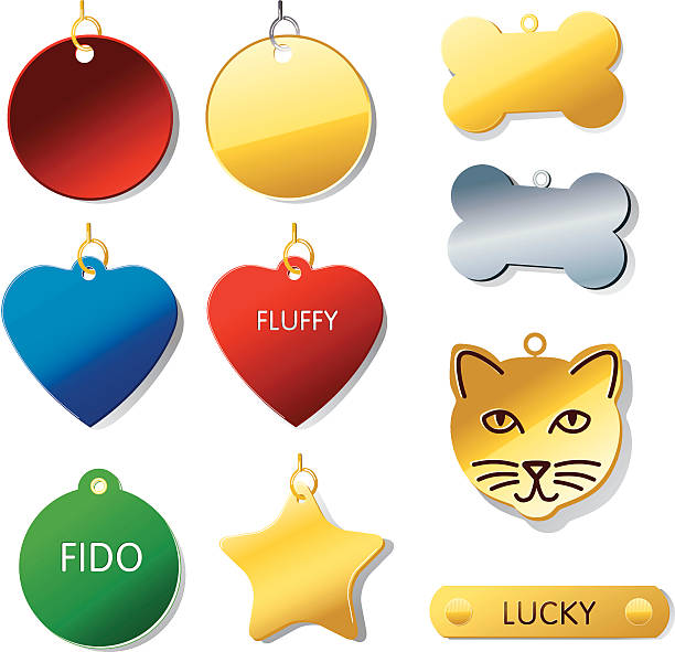 Pet Tags ID your pet! Shadows on separate layer. collar stock illustrations