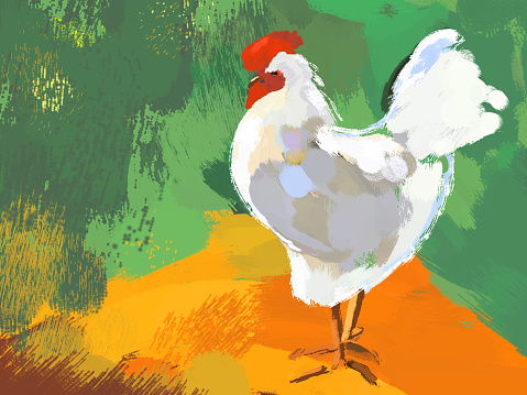 Picturesque illustration of a white rooster on a bright background