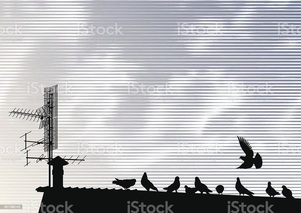 Pigeons on the roof vector art illustration