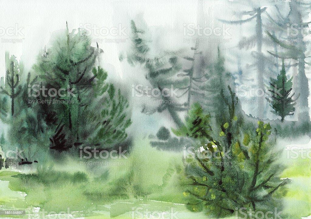 Pine forest vector art illustration