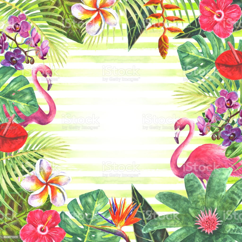 Pink flamingo tropical plants frame stock vector art more images pink flamingo tropical plants frame royalty free pink flamingo tropical plants frame stock vector art mightylinksfo