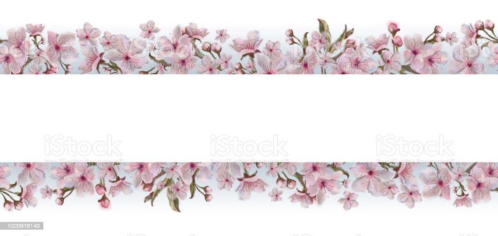 Ilustracion De Plantilla De Flores Rosa Aislada Sobre Fondo Blanco