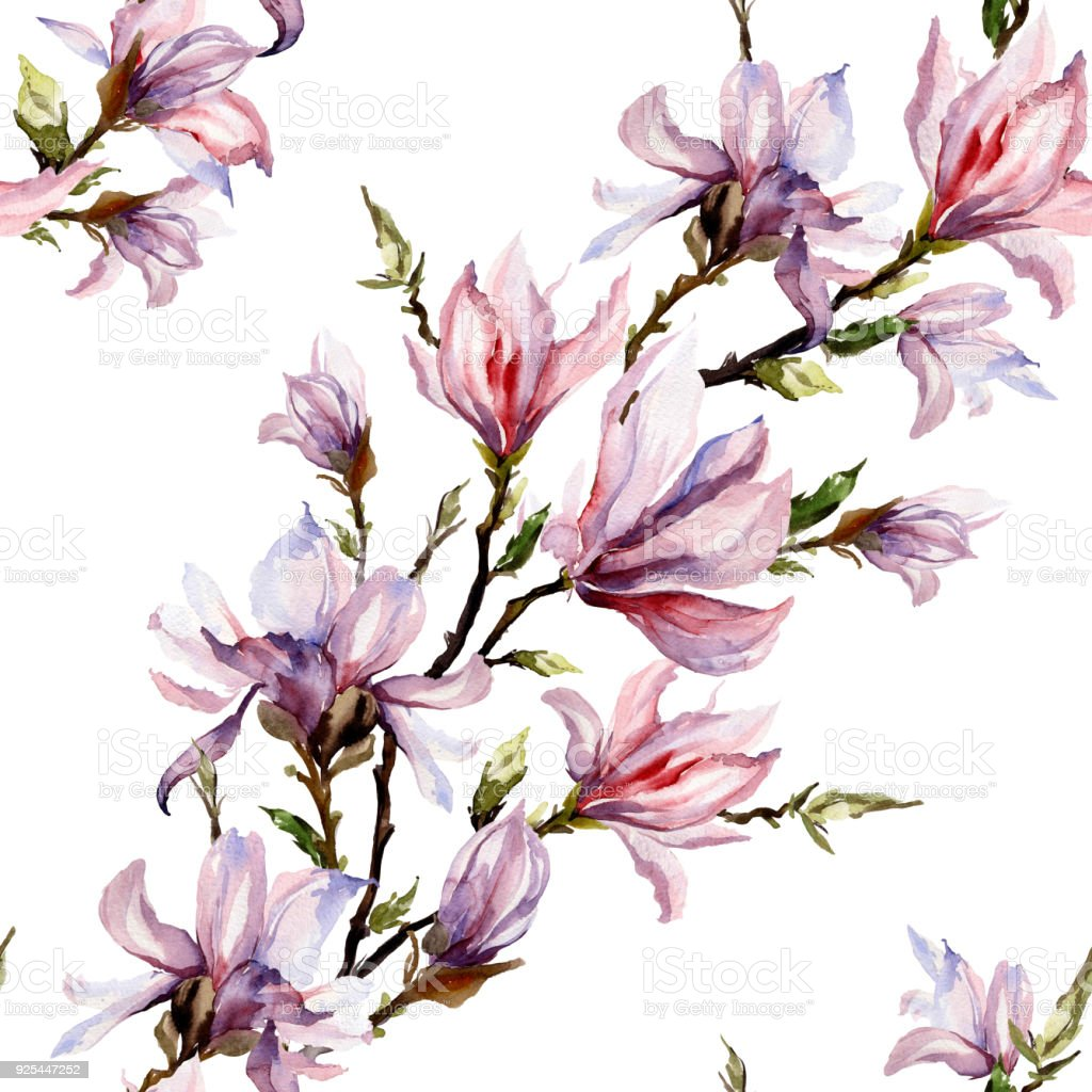 Pink Magnolia Flowers On A Twig On White Background Seamless Floral