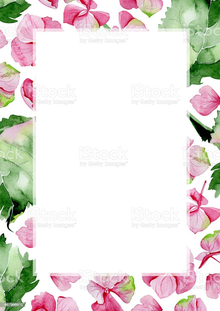 Pink Watercolor Hydrangea Flower Frame Floral Greeting Card Stock ...