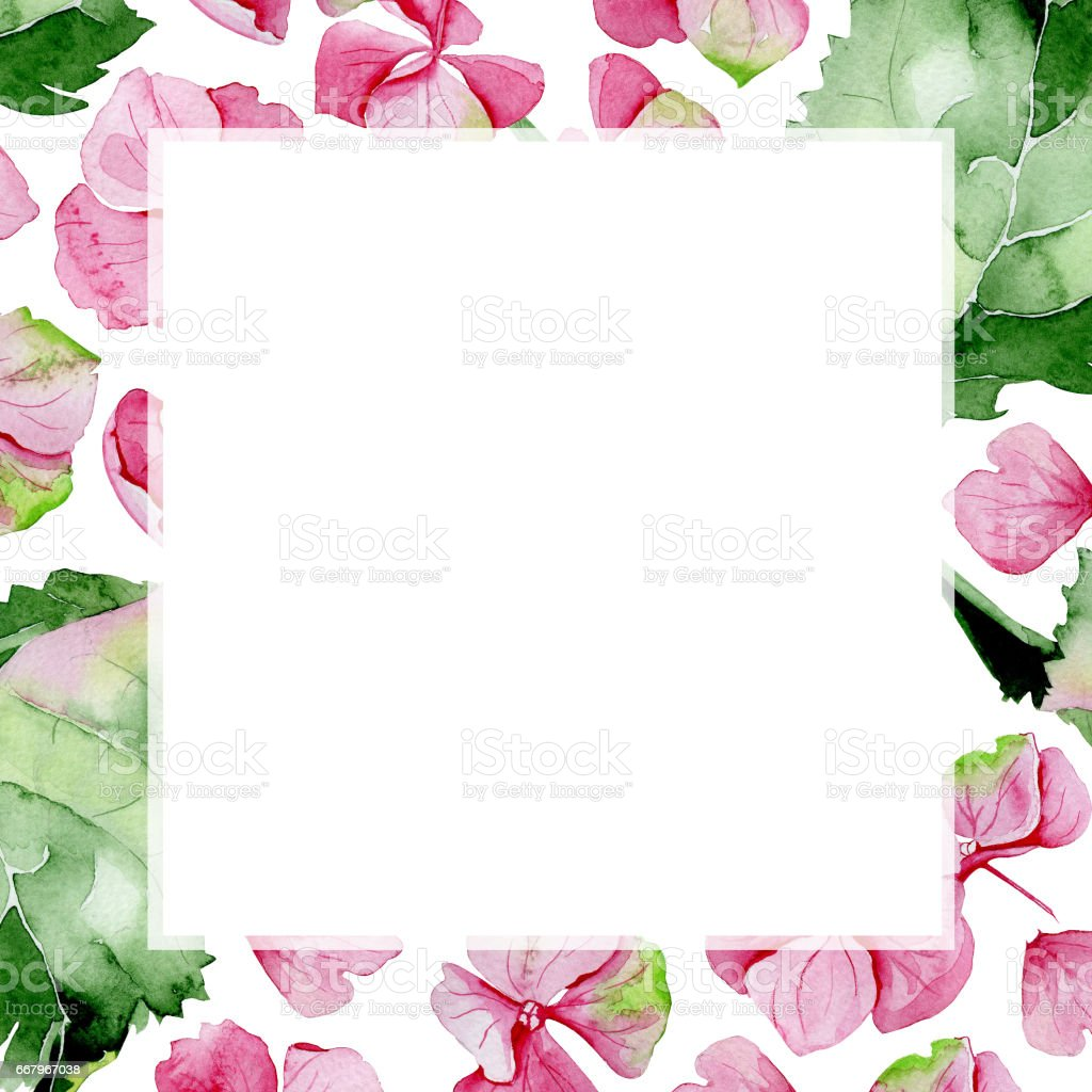 Pink Watercolor Hydrangea Flower Frame Floral Greeting Card Stock