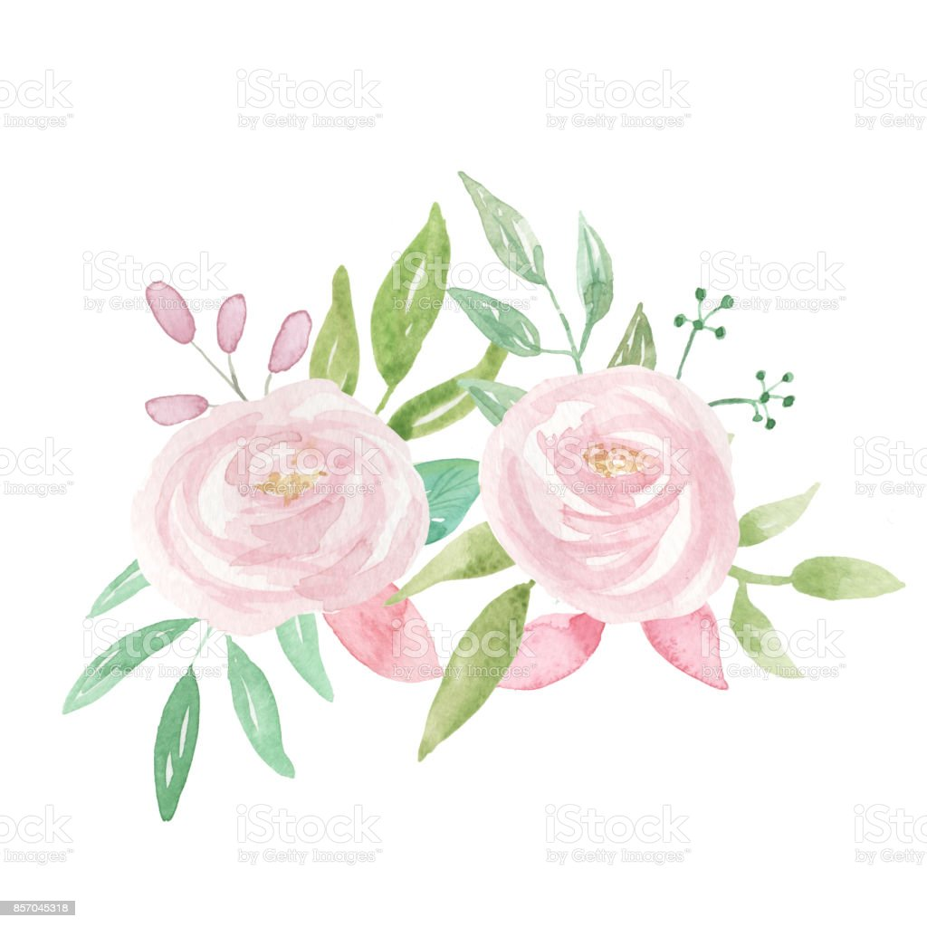 Pink White Flower Watercolor Bouquets Stock Vector Art More Images
